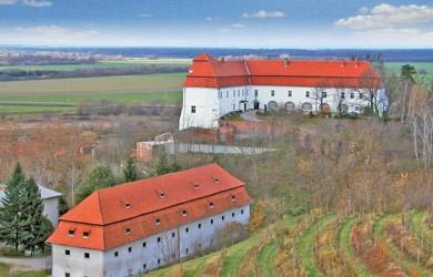 Prekmurski vinorodni okoliš